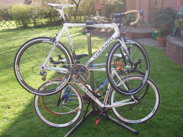 A Bike Tree?