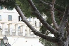 2016_Naples_2016-04-09 13.51.02